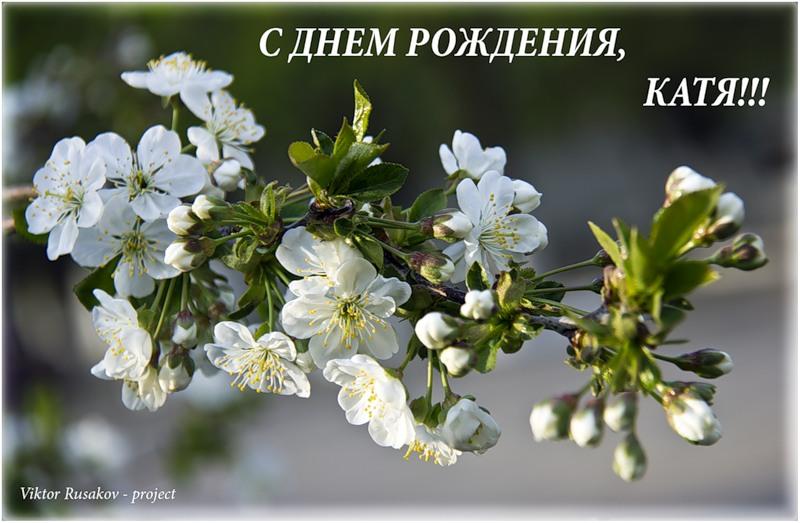 Поздравление мамы на свадьбе сына на украинском языке 87